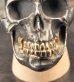 画像3: Large Skull With 18k Gold Teeth Ring