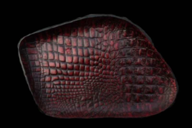 画像1: Gaboratory Alligator Textured Leather Gun Tray  [Red]
